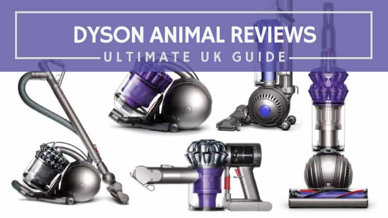 Dyson Animal Reviews Ultimate UK Guide