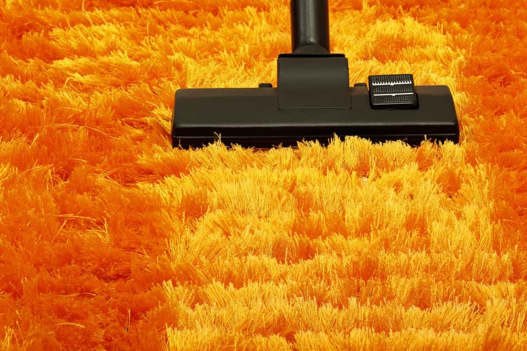 Vacuum rug back and forh