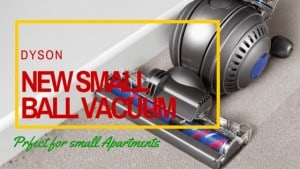 New Small Ball Vacuum