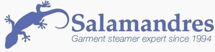 Gecko Steamer Logo