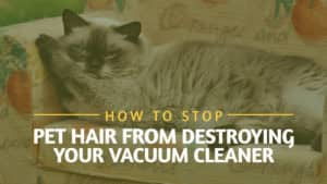 How-to-Stop-Pet-Hair-from-Destroying-Your-Vacuum-Cleaner