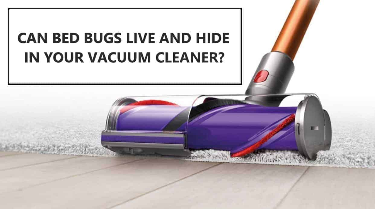 CAN BED BUGS LIVE AND HIDE IN YOUR VACUUM CLEANER
