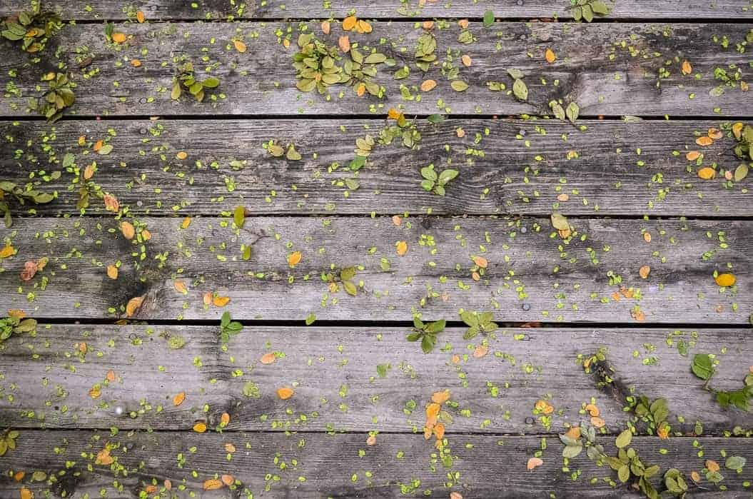 How to clean a wooden deck without using a jet-powered pressure washer -- Best methods reviewed
