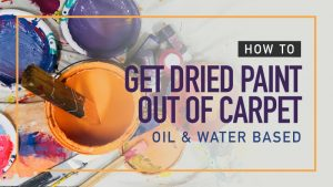 How-To-Get-Dried-Paint-Out-Of-Carpet-Oil-and-Water-Based