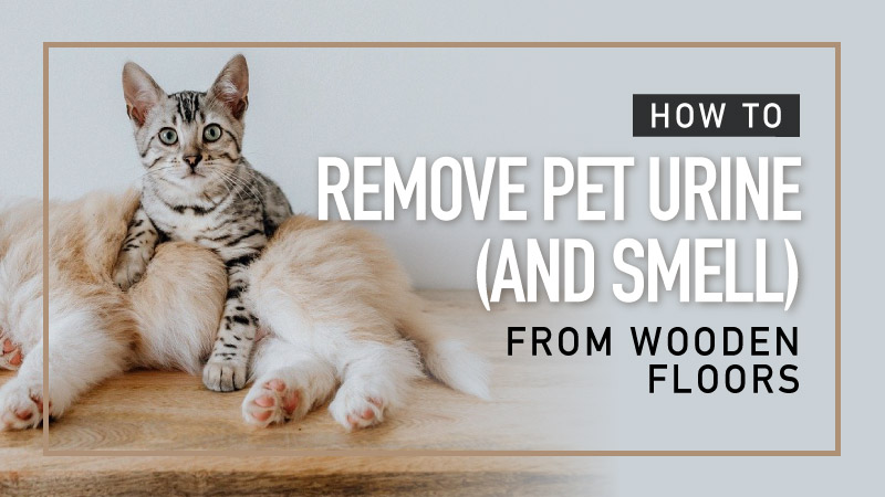 How-to-Remove-Pet-Urine-And-Smell-from-Wooden-Floors