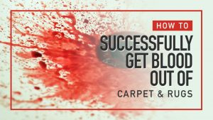 How-to-successfully-get-blood-out-of-carpet-and-Rugs