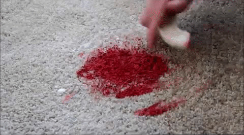 How_to_get_Paint_out_of_Carpet [photoutils.com] (1)
