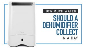 How-Much-Water-Should-a-Dehumidifier-Collect-in-a-Day