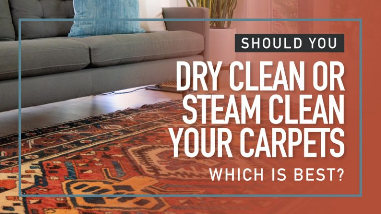 Should-You-Dry-Clean-or-Steam-Clean-Your-Carpets-which-is-best